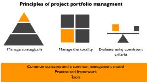 Project portfolio management principles