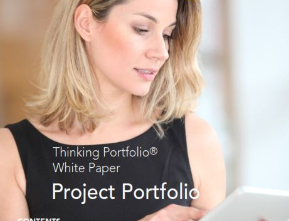 Lees Thinking Portfolio PPM Whitepaper Q1/2015