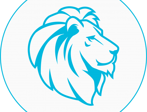 Thinking Portfolio projektisalkku on Leijona-Projektimallin kanssa yhteensopiva