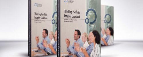 Thinking Portfolio Insights Cookbook Released