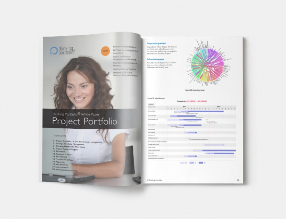 New! Thinking Portfolio – Project Portfolio White Paper 2017